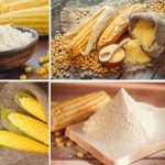 Is Corn Flour Good for Diabetics? Benefits &Daily Limits